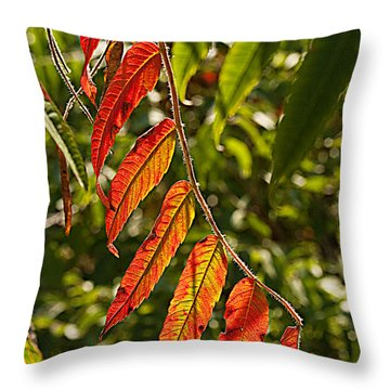 Feather Like Throw Pillow by Kat Besthorn
