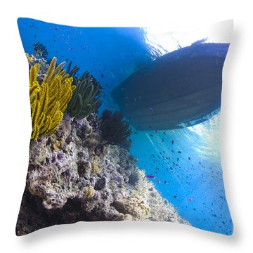 Feather Stars With A Boat Throw Pillow
