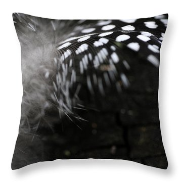 Feather Swirl Throw Pillow