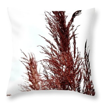Feather Top Throw Pillow by Maria Urso