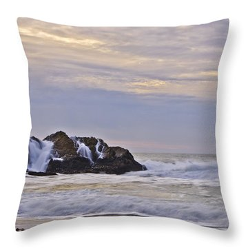 February Seascape Throw Pillow by Priya Ghose