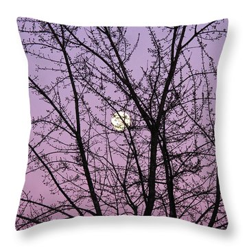 Throw Pillow featuring the photograph February's Full Moon by Rachel Cohen