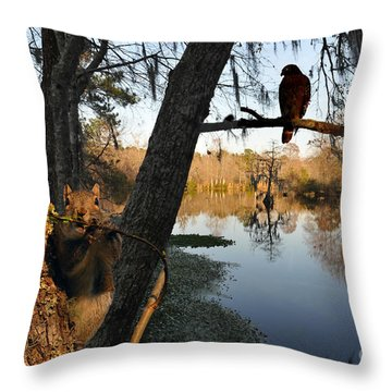 Throw Pillow featuring the photograph Feel Like Being Watched by Dan Friend
