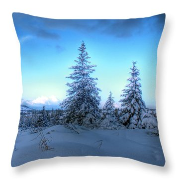 Throw Pillow featuring the photograph Feeling Blue by Michele Cornelius