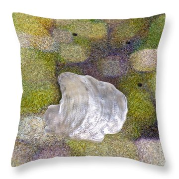 Feeling Encompassed Throw Pillow by Gwyn Newcombe