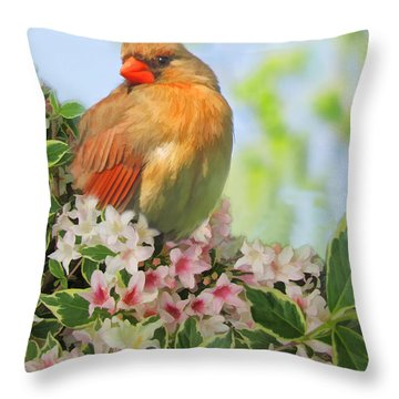 Throw Pillow featuring the photograph Female Cardnial In Wegia Digital Art by Debbie Portwood