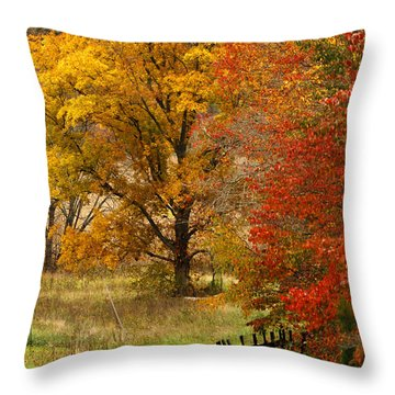Fence In Autumn Throw Pillow by Randall Branham