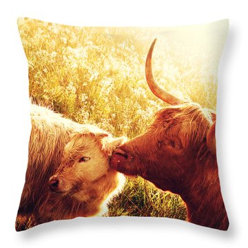 Fenella With Her Daughter. Highland Cows. Scotland Throw Pillow by Jenny Rainbow
