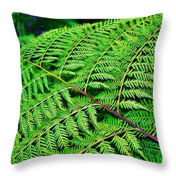 Fern Frond Throw Pillow by Kaye Menner