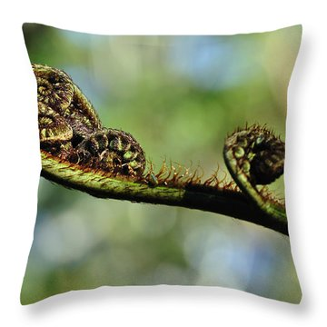Fern Frond Unfurling Throw Pillow by Kaye Menner