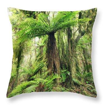 Fern Tree Throw Pillow by MotHaiBaPhoto Prints