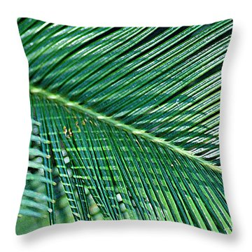 Throw Pillow featuring the photograph Ferns 56 by Donna Bentley