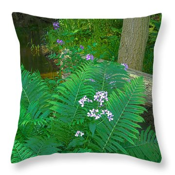 Ferns And Phlox Throw Pillow by Michael Peychich