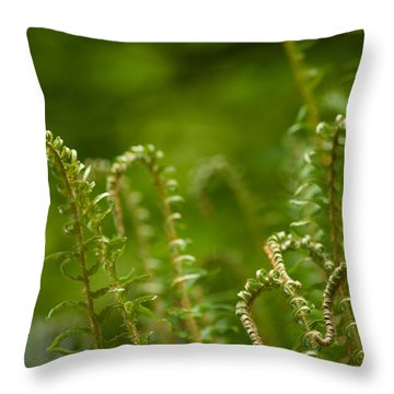 Ferns Fiddleheads Throw Pillow by Mike Reid