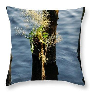 Fertile Ground Throw Pillow