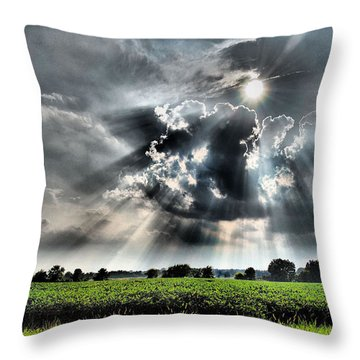 Field Of Beams Throw Pillow