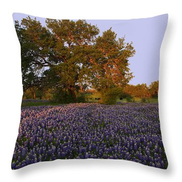 Field Of Blue Throw Pillow