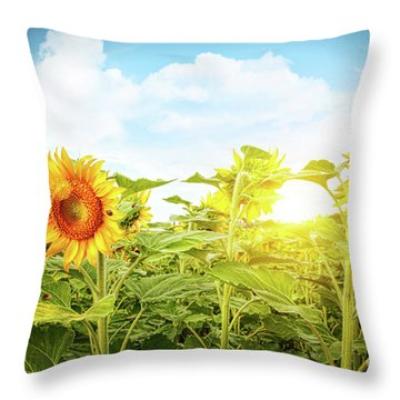 Field Of Colorful Sunflowers And Blue Sky  Throw Pillow by Sandra Cunningham