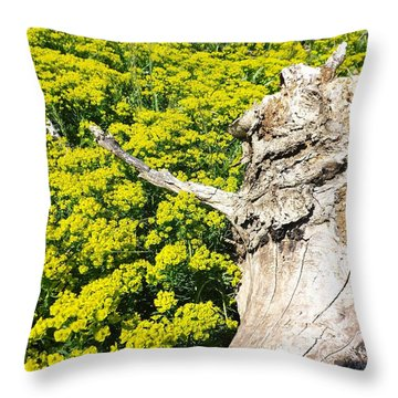 Field Of Flowers 1 Throw Pillow by Gerald Strine