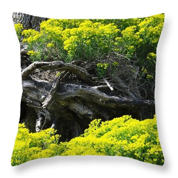Throw Pillow featuring the photograph Field Of Flowers 2 by Gerald Strine