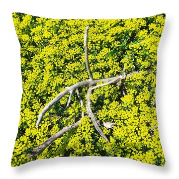 Field Of Flowers 3 Throw Pillow by Gerald Strine