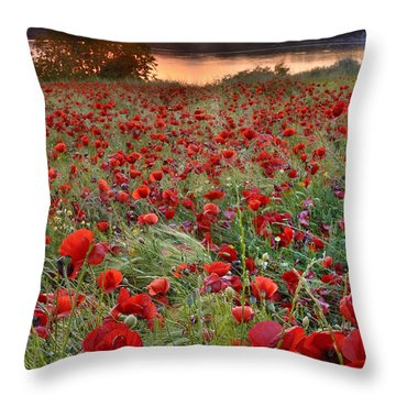 Field Of Poppies Throw Pillow by Guido Montanes Castillo