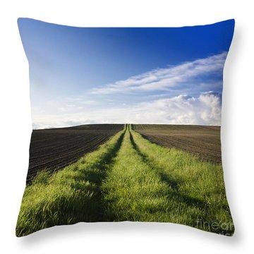 Field Path In Limagne. Auvergne. France. Europe Throw Pillow by Bernard Jaubert