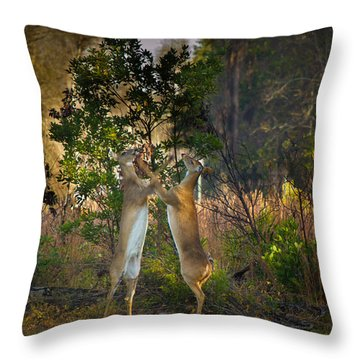 Fight Club Throw Pillow by Christopher Mobley