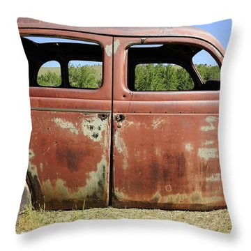 Throw Pillow featuring the photograph Final Destination by Fran Riley