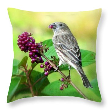 Finch Eating Beautyberry Throw Pillow