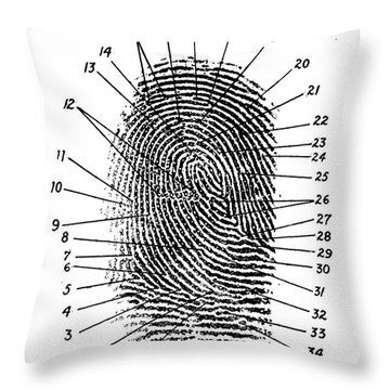 Fingerprint Diagram, 1940 Throw Pillow by Science Source
