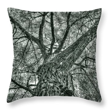 Finkles Landing Tree Throw Pillow