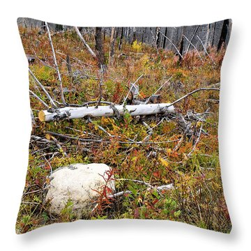 Fire And Fall Throw Pillow by Susan Kinney
