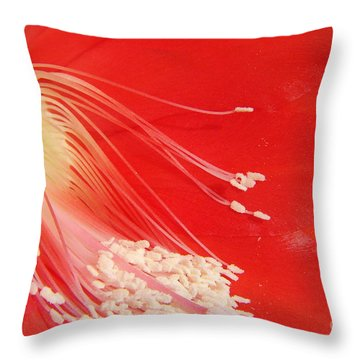 Fire Cactus Throw Pillow
