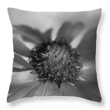 Throw Pillow featuring the photograph Firewheel In Mono by Vicki Pelham