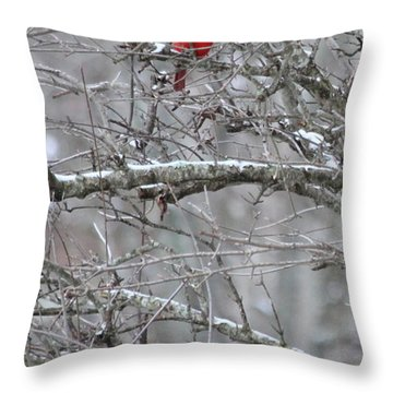 Throw Pillow featuring the photograph First Snow Fall by Kume Bryant