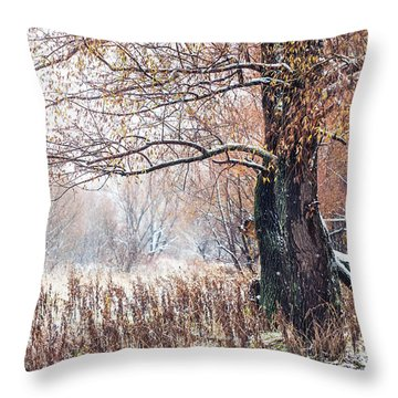 First Snow. Old Tree Throw Pillow by Jenny Rainbow