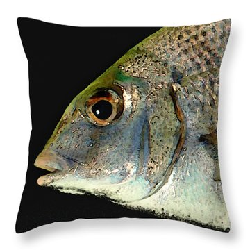 Fisheye Throw Pillow
