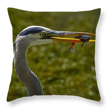Fishing For A Living Throw Pillow by Tony Beck
