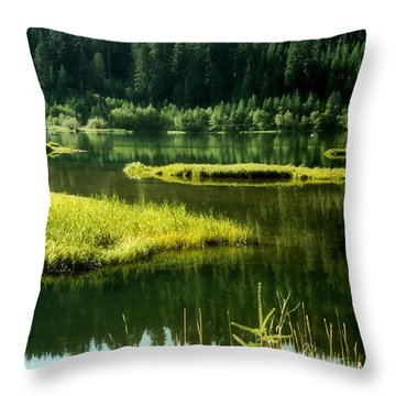 Fishing The Still Water Throw Pillow by Katie Wing Vigil