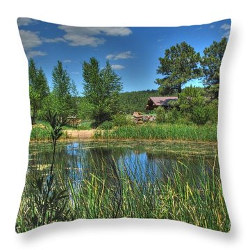 Throw Pillow featuring the photograph Flagstaff by Tam Ryan