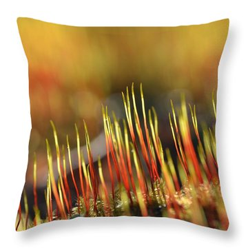 Flaming Moss Throw Pillow