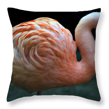 Throw Pillow featuring the photograph Flamingo by Tammy Espino