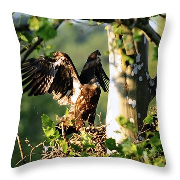 Throw Pillow featuring the photograph Fledgling Testing The Wind by Randall Branham