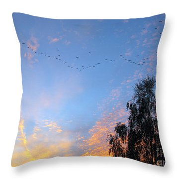 Flight Into The Sunset Throw Pillow by Ausra Huntington nee Paulauskaite