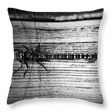 Flight Of The Dragoon Throw Pillow by Jerry Cordeiro