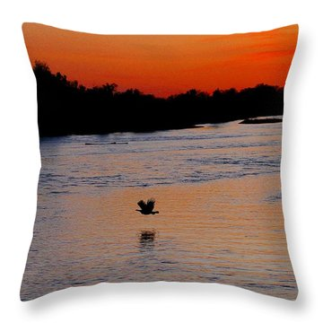 Throw Pillow featuring the photograph Flight Of The Turkey by Elizabeth Winter