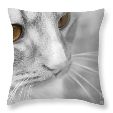Throw Pillow featuring the photograph Flitwick The Cat by Jeannette Hunt