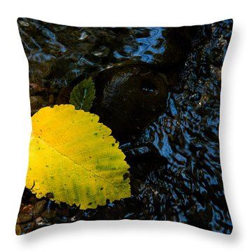 Floating Down The River Throw Pillow by Sheri Van Wert