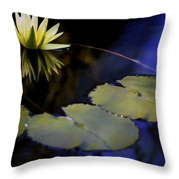 Throw Pillow featuring the photograph Floating In Darkness by John Rivera